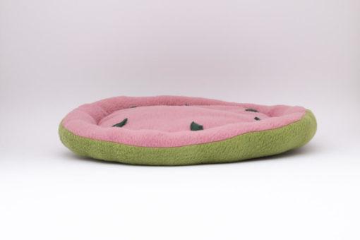 wassermelone meerschweinchen